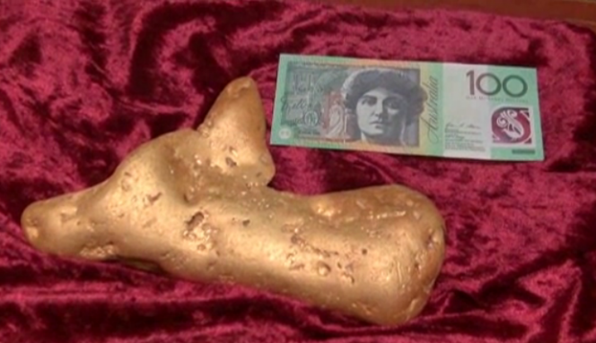12 pound gold nugget found: Worth Over $500,000