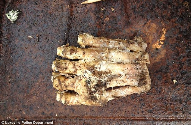 boys find Big Foot In Mass Forest