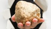 17-pound gold nugget Found:  Worth More Than $255K (PHOTO)