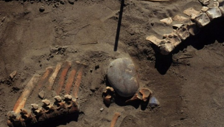 New Discovery Offers Clues To First Albertans