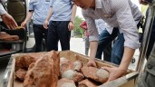 Fossilized Dinosaur Eggs Found In China (PHOTO)