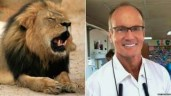 Walter Palmer will not be facing charges for killing  Cecil the lion