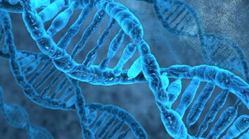 crispr gene editing cancer breakthrough UPDATE